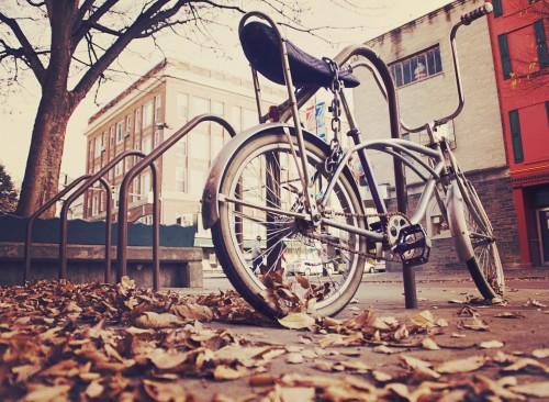 Free photo: Bicycle Bike Cycle Wheel Spoke Vehicle Ride Cycling #38 - 123PhotoFree.com
