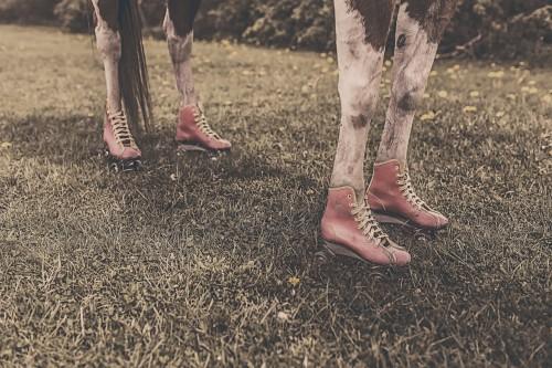 Free photo: Boot Starfish Footwear Covering Texture Echinoderm Summer #96 - 123PhotoFree.com