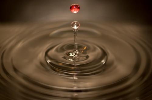 Free photo: Liquid Drop Water Ripple Wineglass Splashing Clear Splash Drops Motion #130 - 123PhotoFree.com