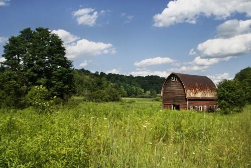 Free photo: Barn Building Structure Grass Field Landscape #46 - 123PhotoFree.com